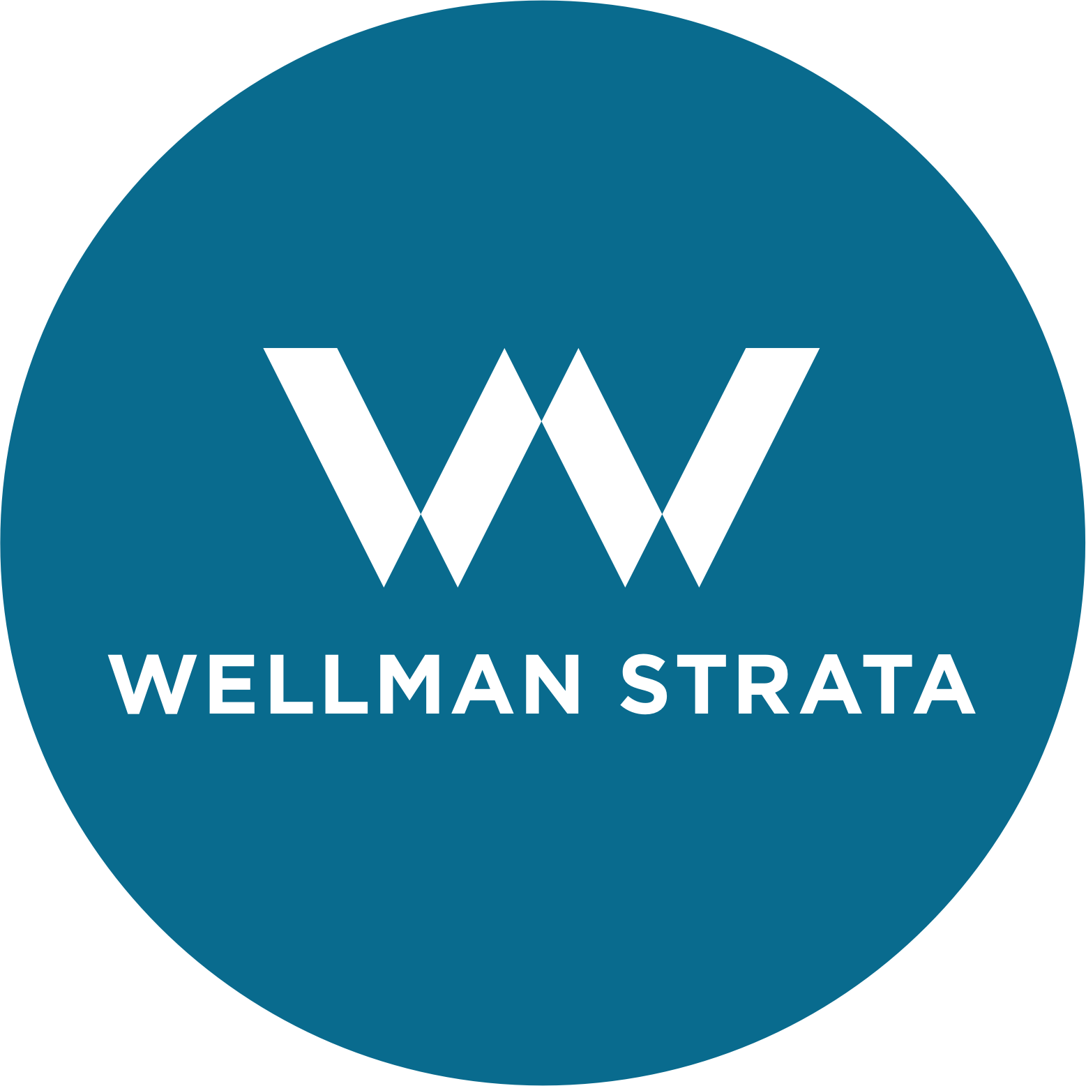 Wellman Strata